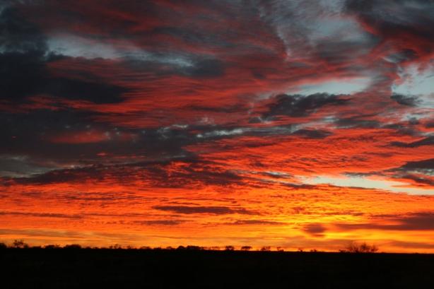 Wschód słońca podczas wczesnego śniadania (zanim pojawią się muchy).
