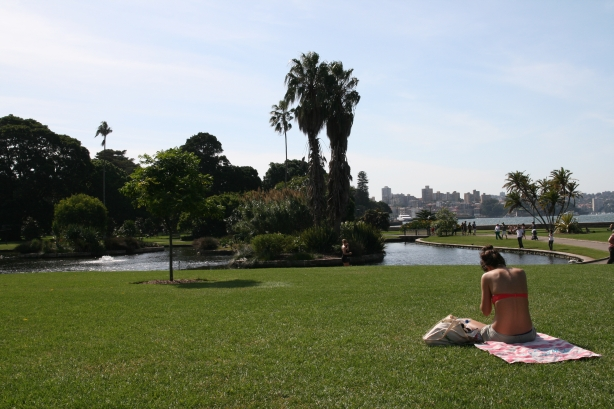 Ogród Botaniczny.