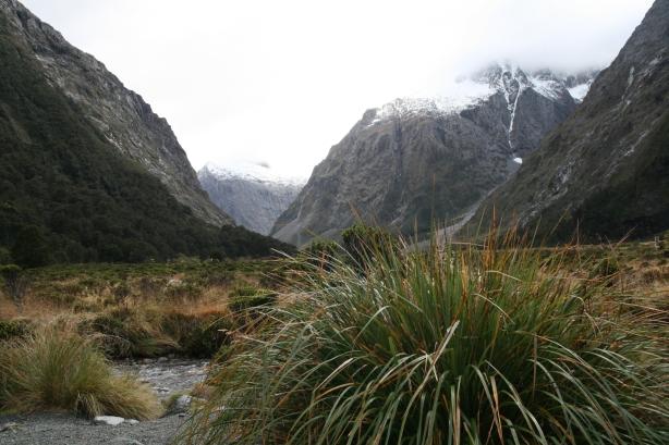 Fiordland.