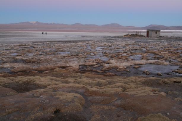 Laguna Colorada o zachodzie słońca.
