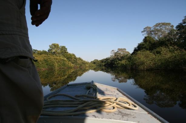 Wodne safari na Rio Miranda.