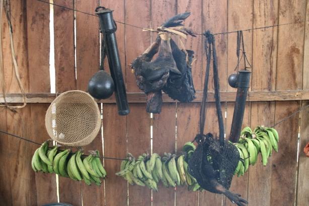 Nad paleniskiem, obok osmolonych kołczanów na strzały nasączone kurarą, wiszą kawałki małpy (na później).
